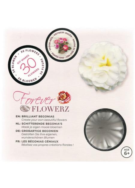 Schitterende Begonia's - white